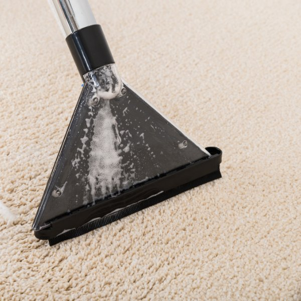 Cleaning a dirty rug in Brownstown